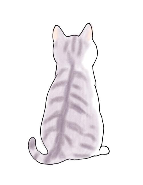 cat03.png